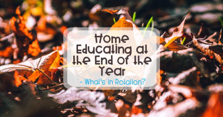 Home Educating at the End of the Year – What's in Rotation?