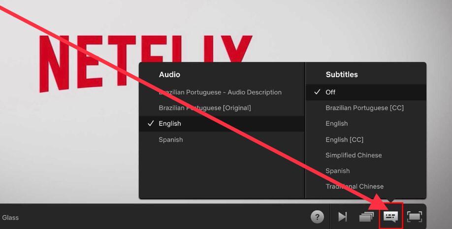 How to change Netflix audio track