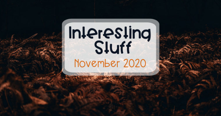 Interesting Stuff – November 2020