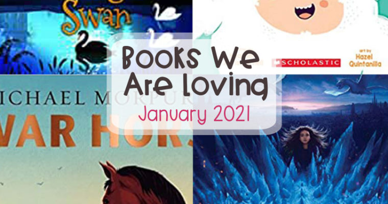 Books We Are Loving – January 2021