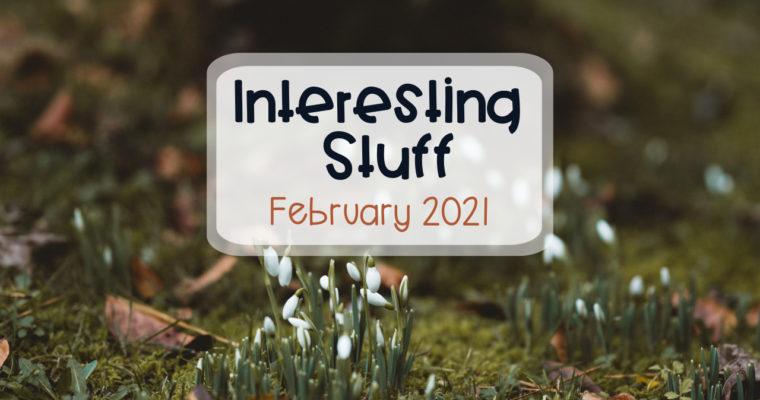 Interesting Stuff – February 2021