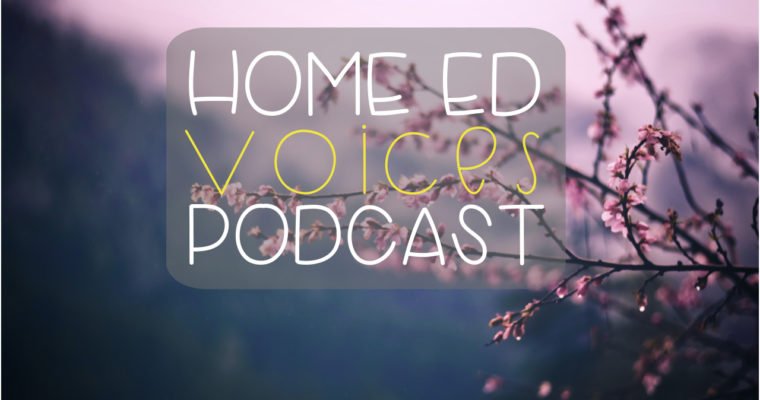 "HOME ED VOICES PODCAST – (SEASON 3) EPISODE 30 Mini Episode: ""DON'T OVER PLAN THE FUN STUFF, (AND WHAT TO DO INSTEAD.)"""